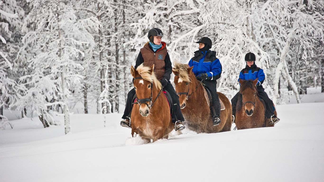 Horse-riding and sleigh rides